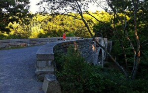 Carriage bridge on Mount Desert Island, Mane in the Acadia National Park