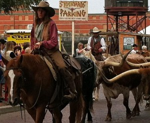 Head rider of the long horn cattle drive at the Stockyards in Fort Worth, Texas